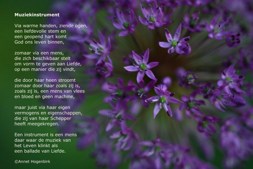 Zijn zoals je bent; gedicht Annet Hogenbirk