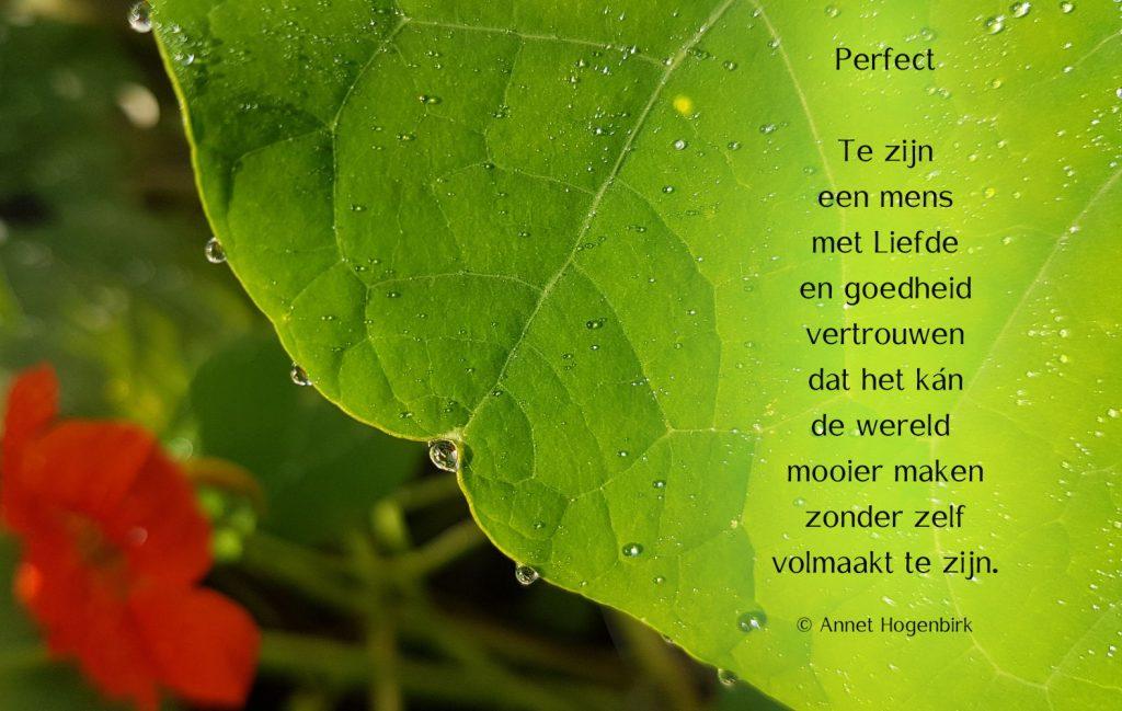 Perfect  Te zijn een mens met Liefde en goedheid vertrouwen dat het kán de wereld  mooier maken zonder zelf volmaakt te zijn.  © Annet Hogenbirk